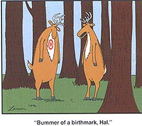 Bummer of a birthmark hal family gotts usa adventure this elk reminded us of gary larsons far side birthday card bookmarktalkfo Images