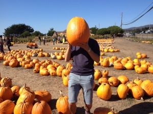By no means the largest pumpkin we saw