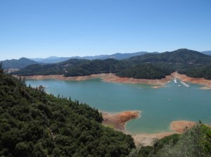 Shasta Lake with its rusty shores