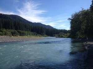 The sediment-filled powder blue water of Hoh River