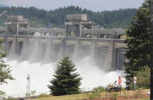 Enough electricity is produced by the damming to power all of Oregon