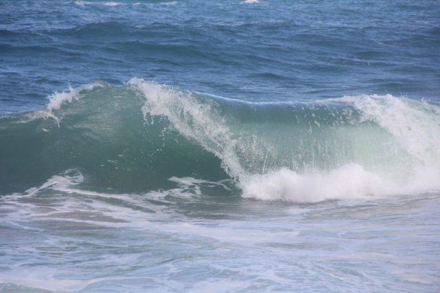 IMG_7628 wave tube