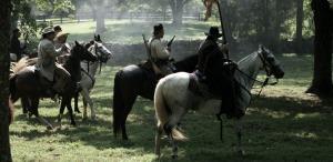 Horsey life on the plantation