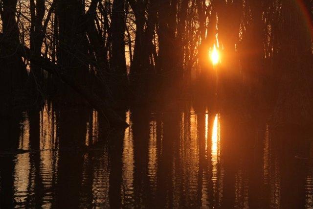 IMG_0584 swamp sunset